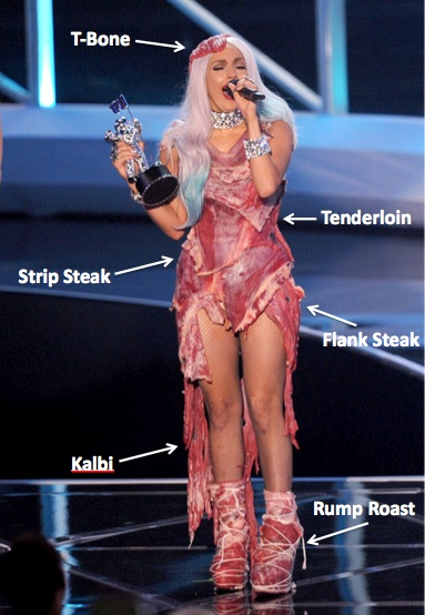 """lady gaga meat dress real meat. of their """"brand"""" while"""