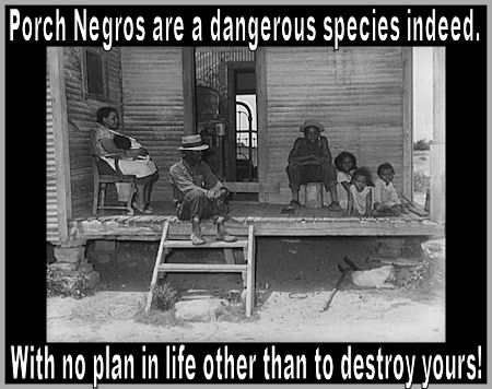 Are Most Black People Secret Members Of The Crabs In The Barrel Dream Killer Enforcement Bureau?