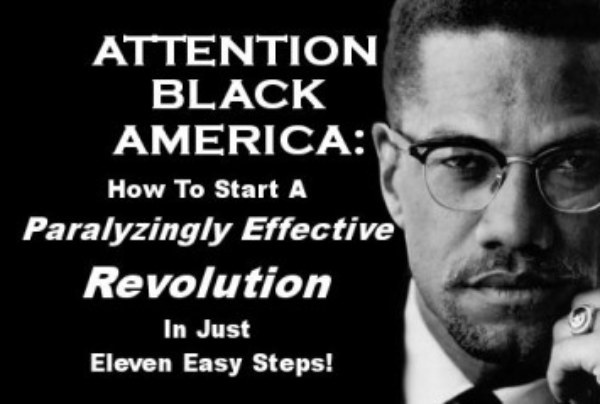 Attention Black America: How To Start A Paralyzingly Effective Revolution In Just Eleven Easy Steps!