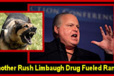 "The Reasons Why Rush Limbaugh & The Booing NASCAR Fans Really Hate Those ""Uppity Blacks"" Like Michelle Obama!"