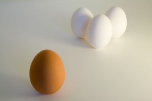 Egg Racism