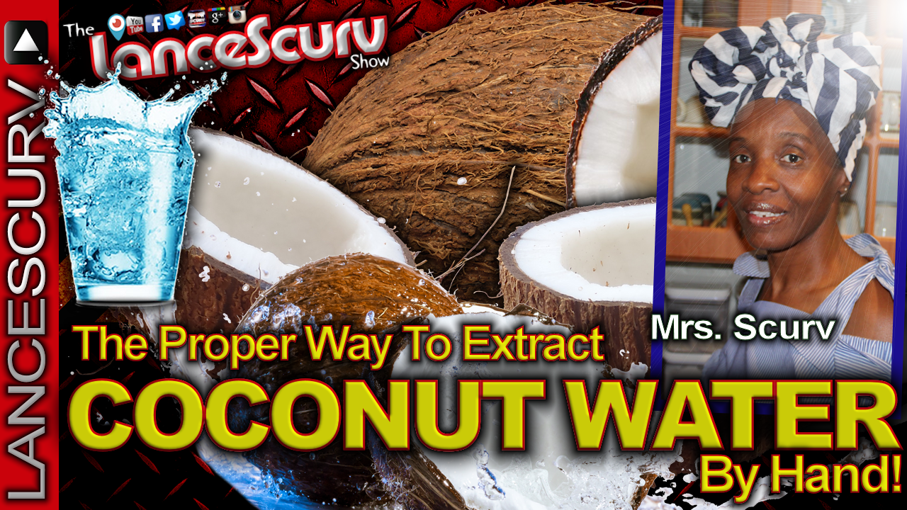 The Proper Way To Extract Coconut Water By Hand! - The LanceScurv Show