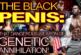 THE BLACK PENIS: That Dangerous Weapon Of GENETIC ANNIHILATION! – The LanceScurv Show