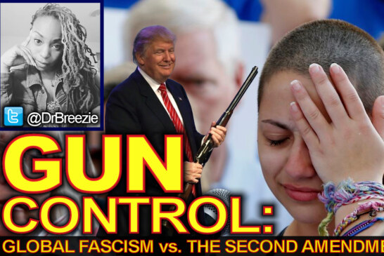 GUN CONTROL: Global Fascism vs. The Second Amendment! - The Dr. Ramona Brockett Show
