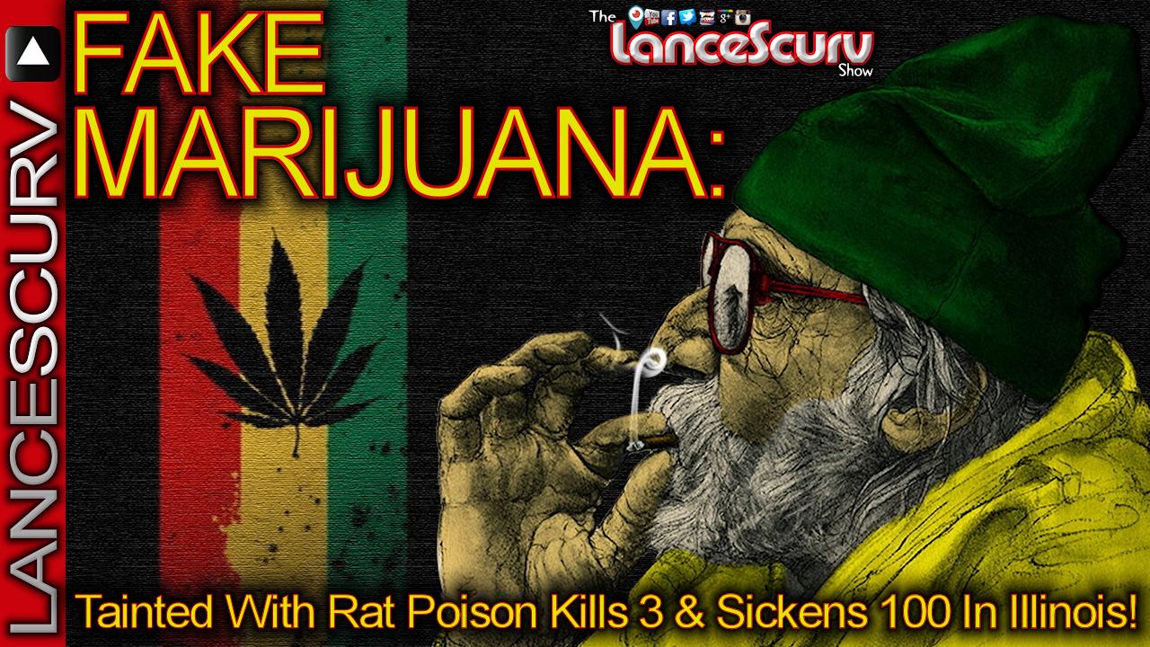 Fake Marijuana Tainted With Rat Poison Kills 3 & Sickens 100 In Illinois! - The LanceScurv Show