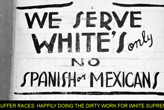 BUFFER RACES: Happily Doing The Dirty Work For White Supremacy!