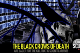 THE BLACK CROWS OF DEATH ARE EAGER FOR THE KILL THAT IS SOON TO ARRIVE!