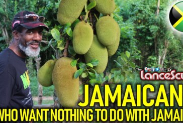 JAMAICANS WHO WANT NOTHING TO DO WITH JAMAICA! – The LanceScurv Show