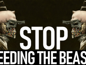 WE HAVE TO STOP FEEDING THE BEAST! – Brother Keston Live