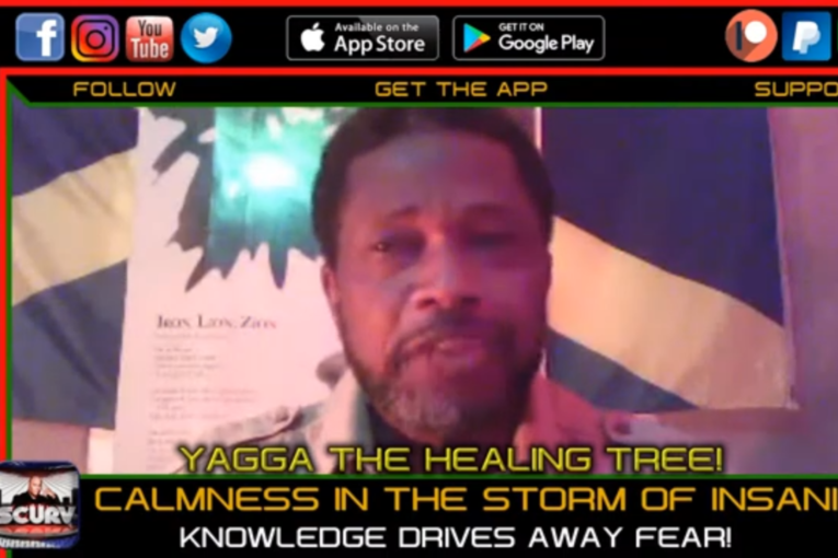 CALMNESS IN THE STORM OF INSANITY: KNOWLEDGE DRIVES AWAY FEAR! – YAGGA THE HEALING TREE