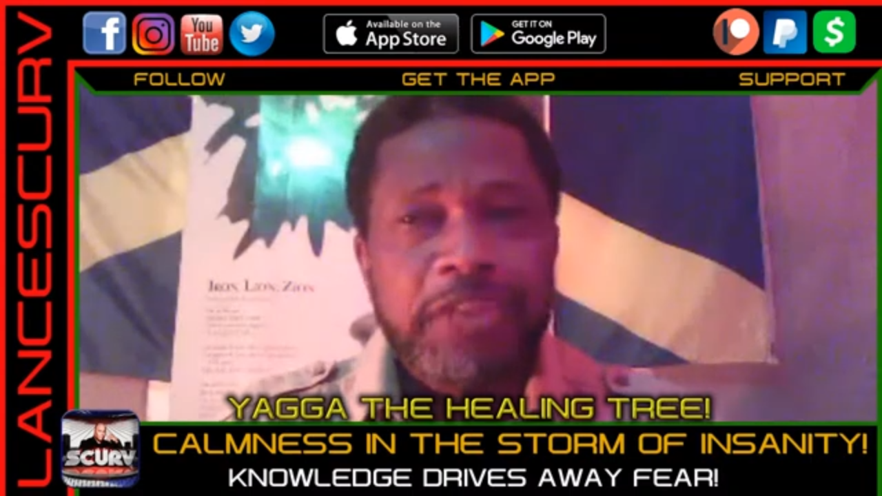 CALMNESS IN THE STORM OF INSANITY: KNOWLEDGE DRIVES AWAY FEAR! - YAGGA THE HEALING TREE