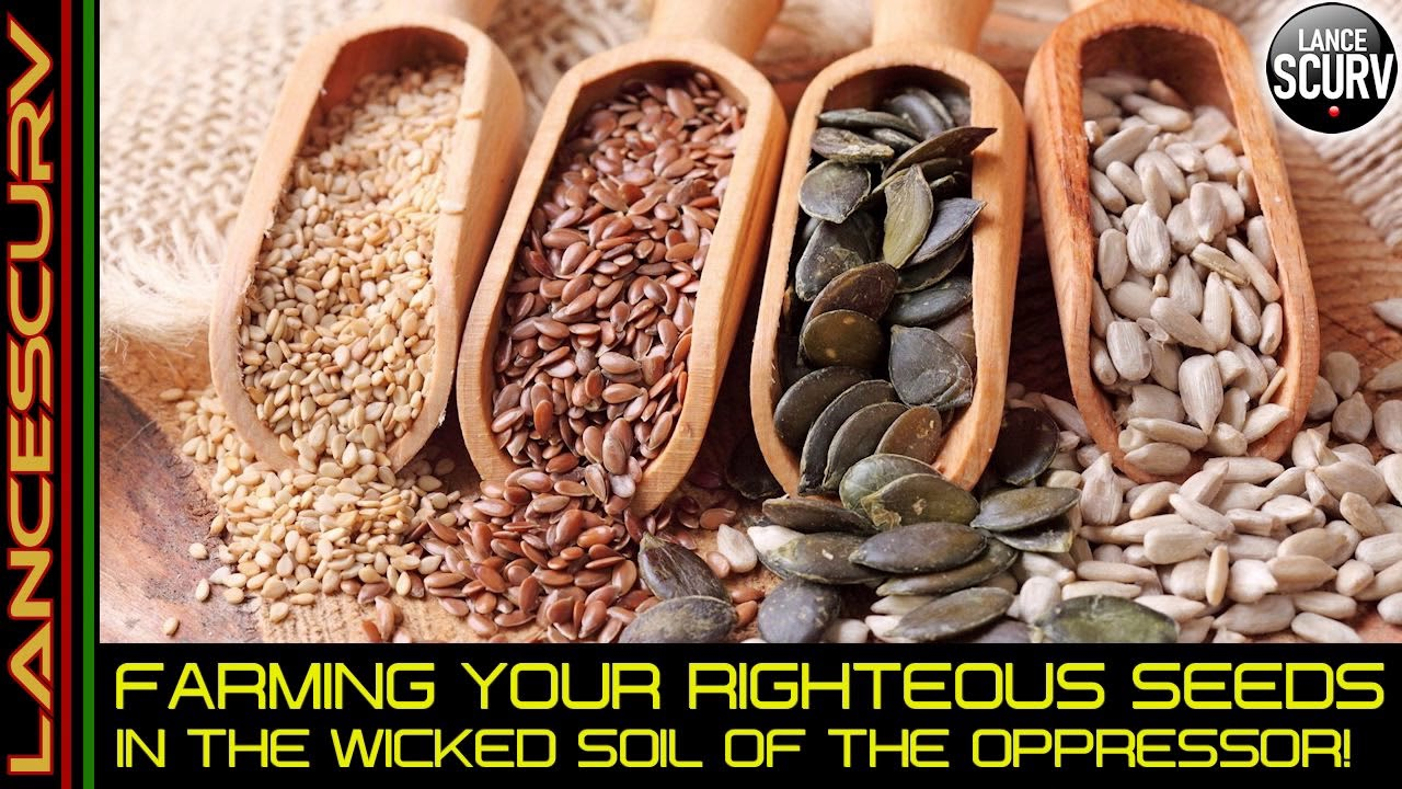 FARMING YOUR RIGHTEOUS SEEDS IN THE WICKED SOIL OF THE OPPRESSOR! - The LanceScurv Show
