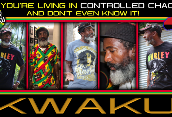 YOU'RE LIVING IN CONTROLLED CHAOS AND DON'T EVEN KNOW IT! – BROTHER KWAKU