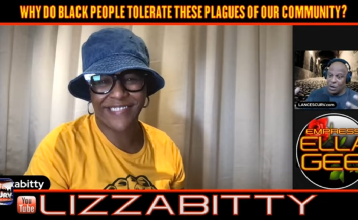 WHY DO BLACK PEOPLE TOLERATE THESE PLAGUES OF OUR COMMUNITY - LIZZABITTY