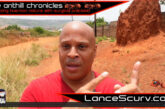 YOU WILL SUCCEED REGARDLESS! - THE ANTHILL CHRONICLES