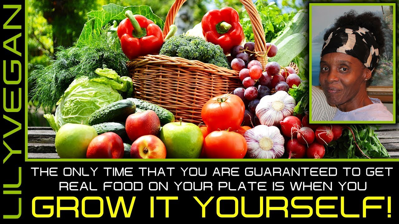 THE ONLY TIME THAT YOU ARE GUARANTEED TO GET REAL FOOD ON YOUR PLATE IS WHEN YOU GROW IT YOURSELF!