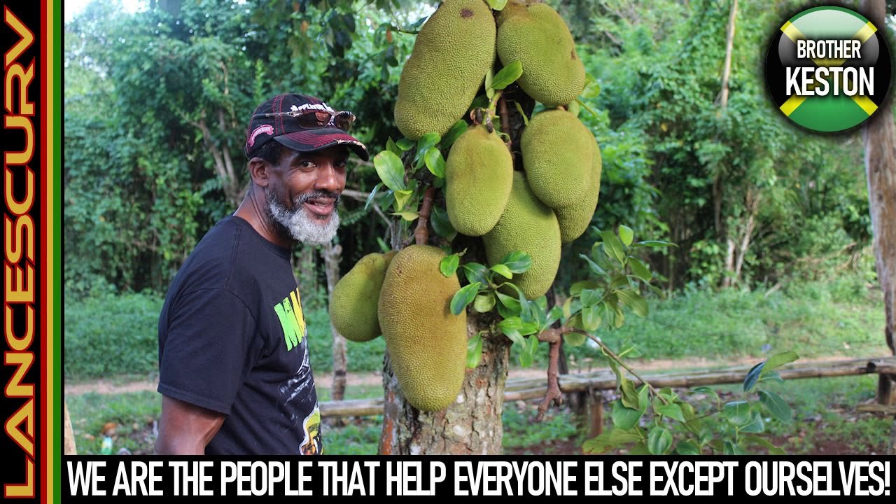 WE ARE THE PEOPLE THAT HELP EVERYONE ELSE EXCEPT OURSELVES! - The LanceScurv Show